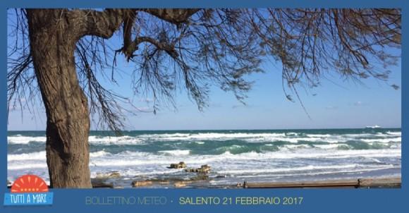 Bollettino 21 febbraio 2017
