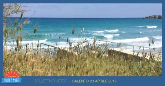 Bollettino 23 aprile 2017